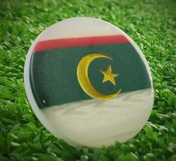 Botão avulso seleção da Argelia